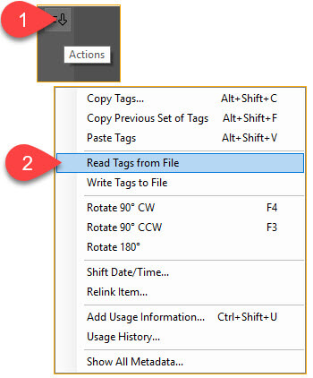 Daminion's Read tags from file command